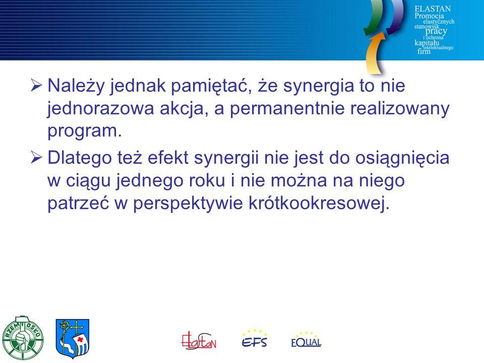  Należy jednak pamiętać, że synergia to nie jednorazowa akcja, a permanentnie realizowany program.  Dlatego też efekt synergii nie jest do osiągnięc
