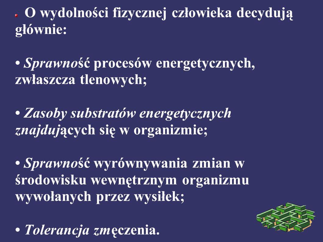 O wydolności fizycznej człowieka decydują głównie: Sprawność procesów energetycznych, zwłaszcza tlenowych; Zasoby substratów energetycznych znajdujących się w organizmie; Sprawność wyrównywania zmian w środowisku wewnętrznym organizmu wywołanych przez wysiłek; Tolerancja zmęczenia.