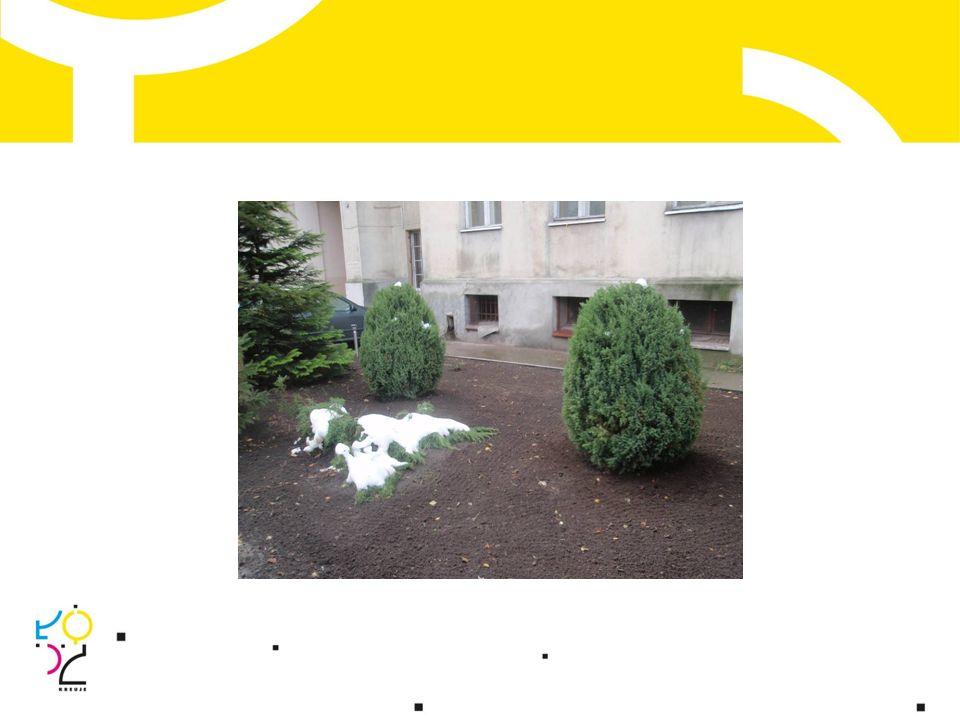Miasto zakupiło materiały budowlane oraz sadzonki roślin; Wspólnota Mieszkaniowa wykonała w czynie społecznym chodnik, ogrodzenie, nasadzenia.