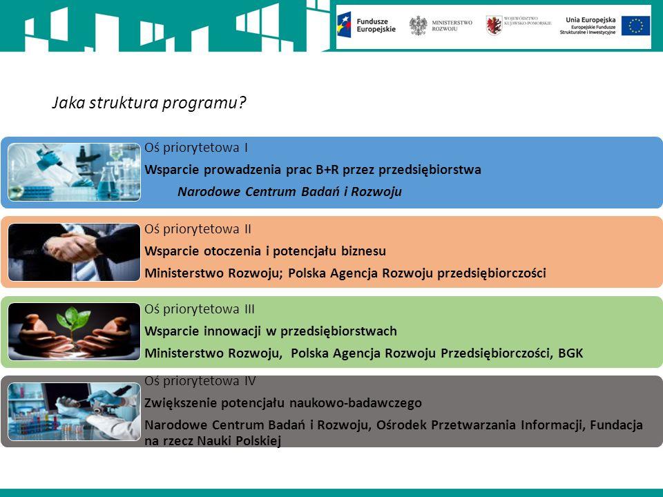 Jaka struktura programu.