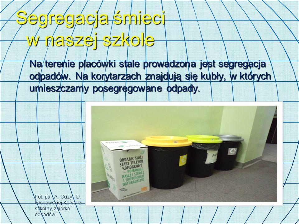 Segregacja śmieci w naszej szkole Na terenie placówki stale prowadzona jest segregacja odpadów. Na korytarzach znajdują się kubły, w których umieszcza
