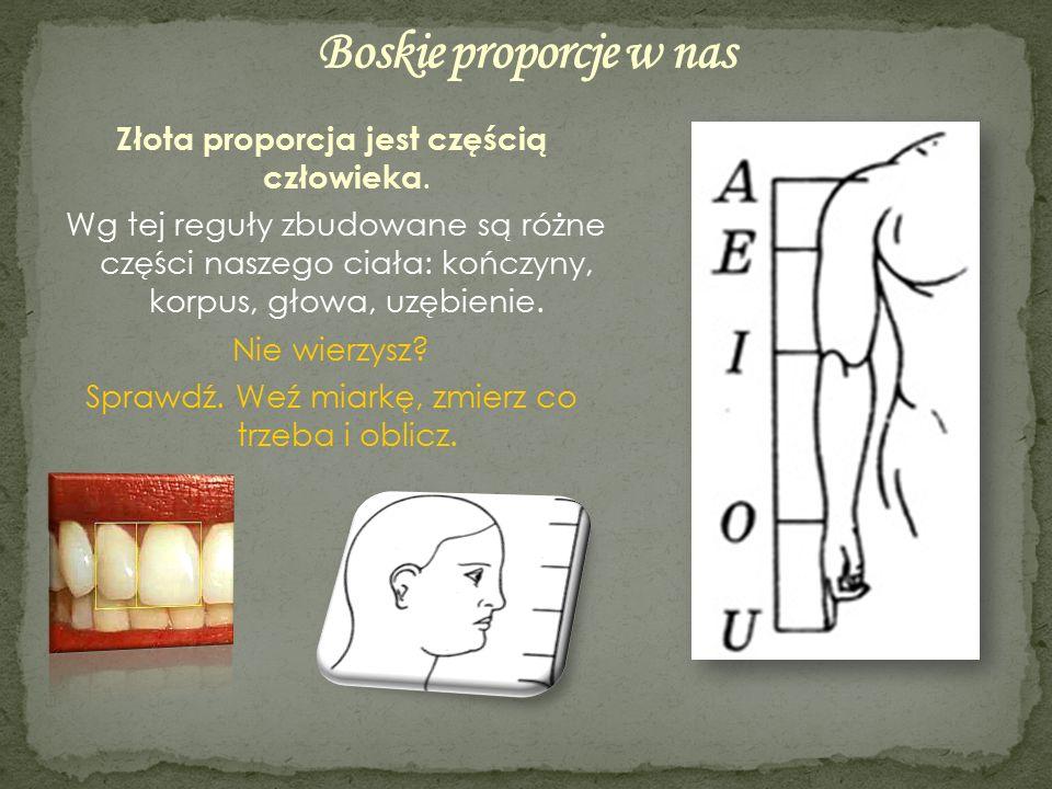 Złota proporcja jest częścią człowieka. Wg tej reguły zbudowane są różne części naszego ciała: kończyny, korpus, głowa, uzębienie. Nie wierzysz? Spraw