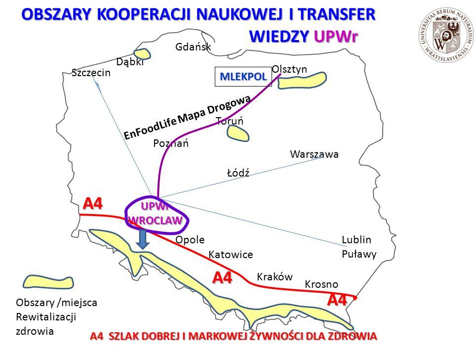 OBSZARY KOOPERACJI NAUKOWEJ I TRANSFER OBSZARY KOOPERACJI NAUKOWEJ I TRANSFER WIEDZY UPWr WIEDZY UPWrUPWrWROCLAW Poznań Olsztyn Warszawa Kraków Krosno Opole Katowice Szczecin Gdańsk Lublin Puławy A4 A4 A4 Toruń Dąbki Obszary /miejsca Rewitalizacji zdrowia A4 SZLAK DOBREJ I MARKOWEJ ŻYWNOŚCI DLA ZDROWIA Łódź MLEKPOL EnFoodLife Mapa Drogowa