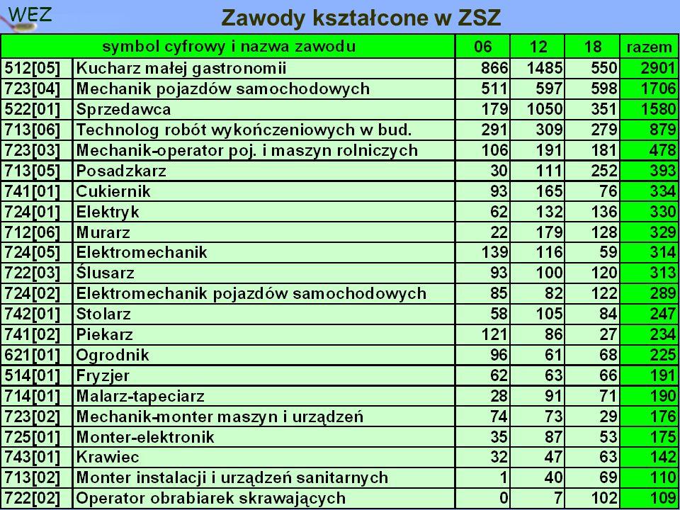 WEZ Zawody kształcone w ZSZ