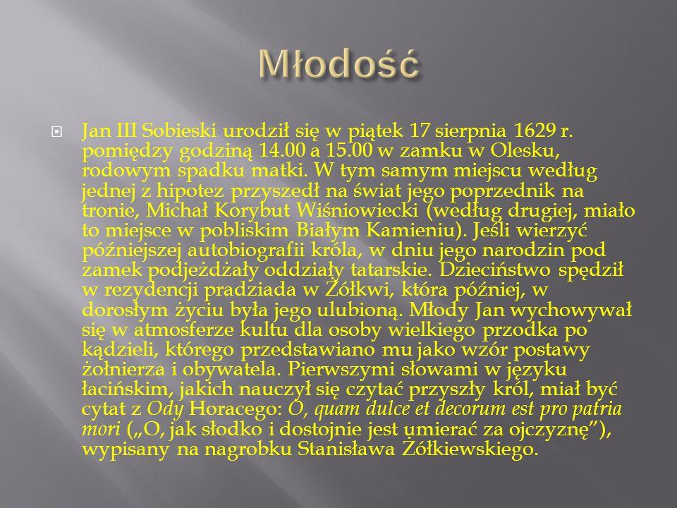  Jan Sobieski pochodził ze znamienitego rodu Sobieskich z Sobieszyna, który w okresie życia jego dziada Marka Sobieskiego dołączył do grona rodów magnackich.