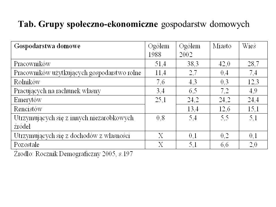 Tab. Grupy społeczno-ekonomiczne gospodarstw domowych