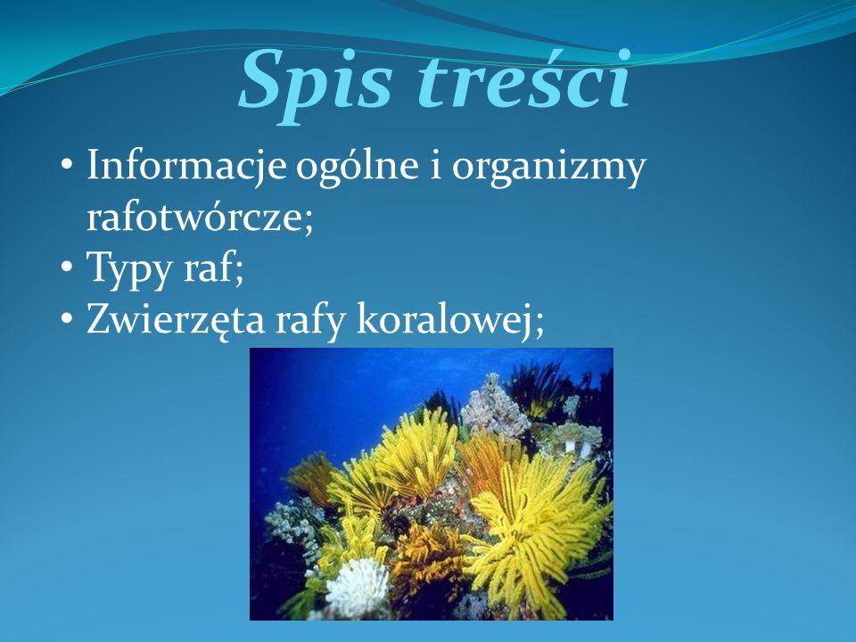 Spis treści Informacje ogólne i organizmy rafotwórcze; Typy raf; Zwierzęta rafy koralowej;