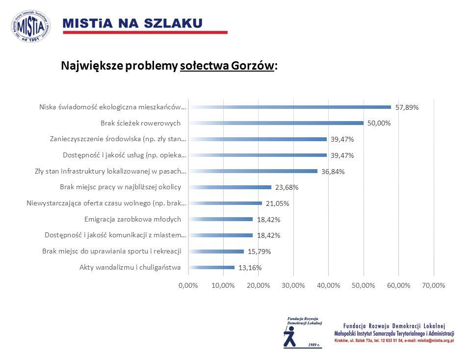 Największe problemy sołectwa Gorzów: