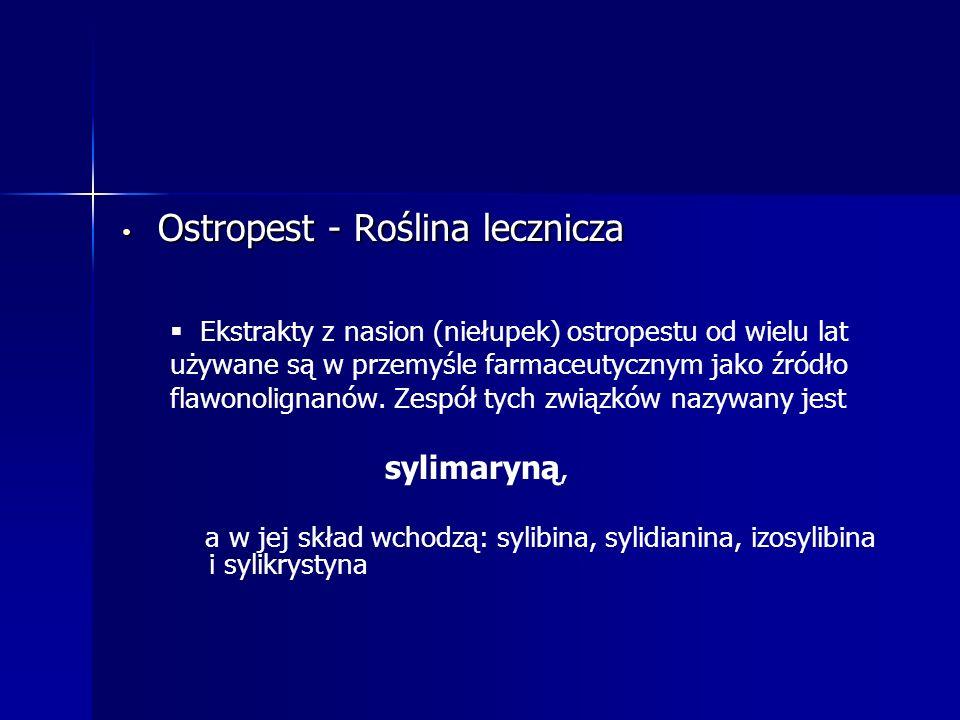 Ostropest - Roślina lecznicza Ostropest - Roślina lecznicza   Ekstrakty z nasion (niełupek) ostropestu od wielu lat używane są w przemyśle farmaceutycznym jako źródło flawonolignanów.