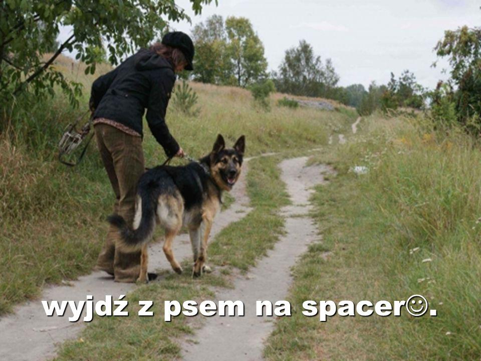 wyjdź z psem na spacer.