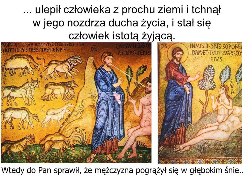 ... ulepił człowieka z prochu ziemi i tchnął w jego nozdrza ducha życia, i stał się człowiek istotą żyjącą. Wtedy do Pan sprawił, że mężczyzna pogrąży