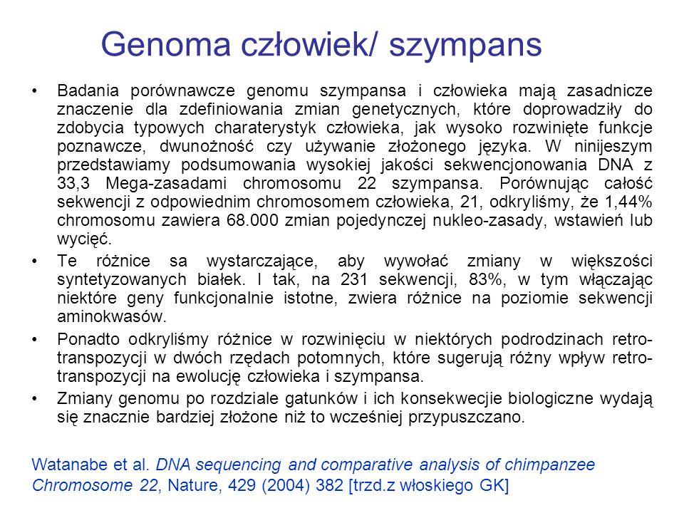 Genoma człowiek/ szympans Badania porównawcze genomu szympansa i człowieka mają zasadnicze znaczenie dla zdefiniowania zmian genetycznych, które doprowadziły do zdobycia typowych charaterystyk człowieka, jak wysoko rozwinięte funkcje poznawcze, dwunożność czy używanie złożonego języka.