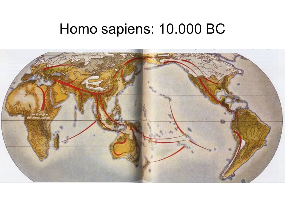 Homo sapiens: 10.000 BC