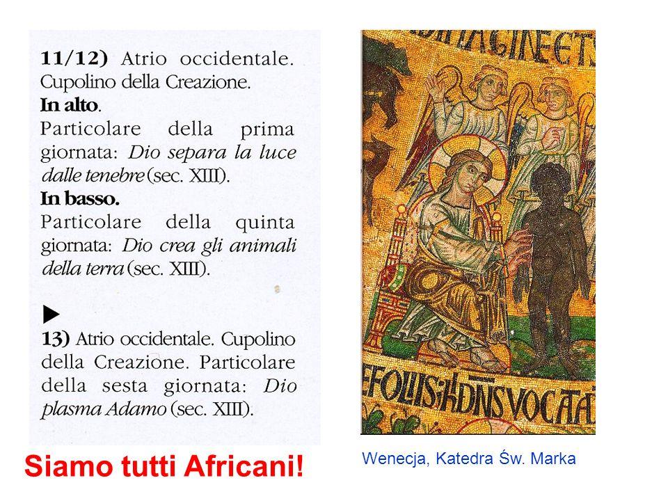 Siamo tutti Africani! Wenecja, Katedra Św. Marka