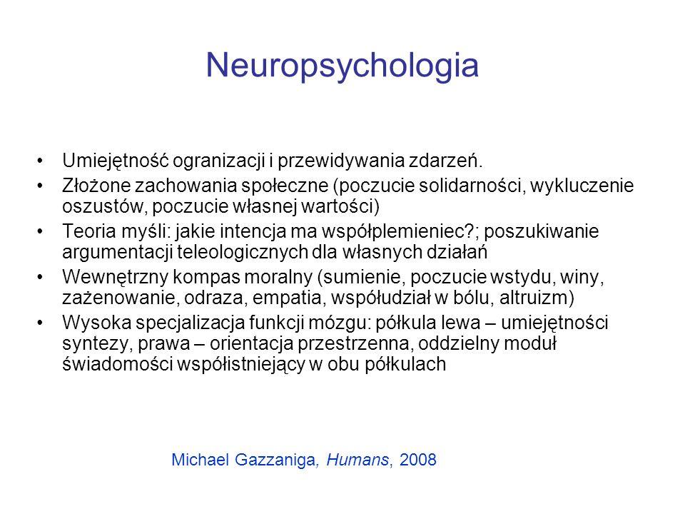 Neuropsychologia Umiejętność ogranizacji i przewidywania zdarzeń.
