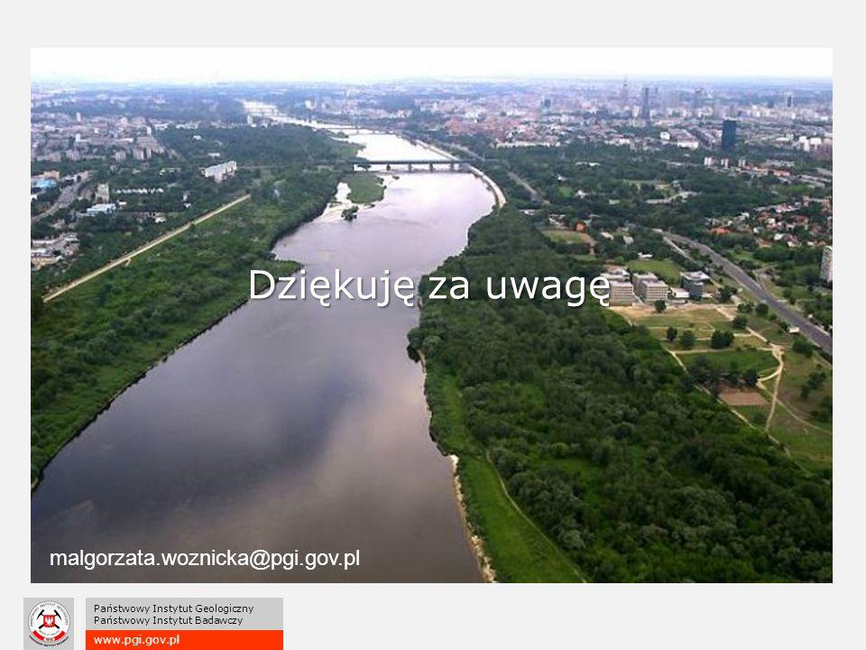 www.pgi.gov.pl Państwowy Instytut Geologiczny Państwowy Instytut Badawczy Dziękuję za uwagę malgorzata.woznicka@pgi.gov.pl