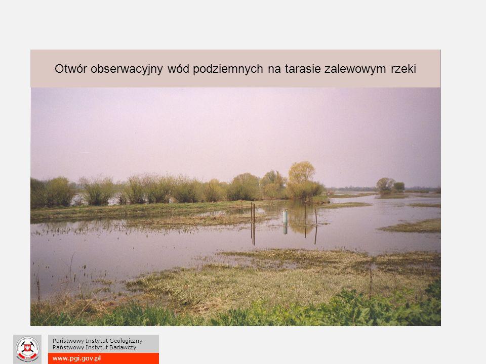 www.pgi.gov.pl Państwowy Instytut Geologiczny Państwowy Instytut Badawczy Otwór obserwacyjny wód podziemnych na tarasie zalewowym rzeki
