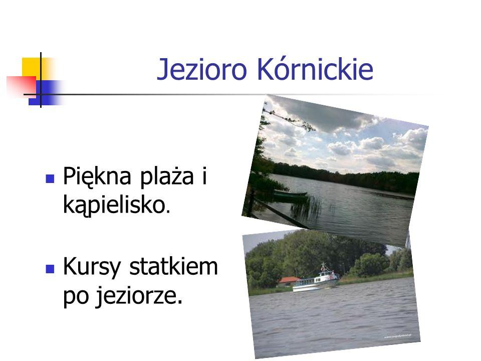 Jezioro Kórnickie Piękna plaża i kąpielisko. Kursy statkiem po jeziorze.