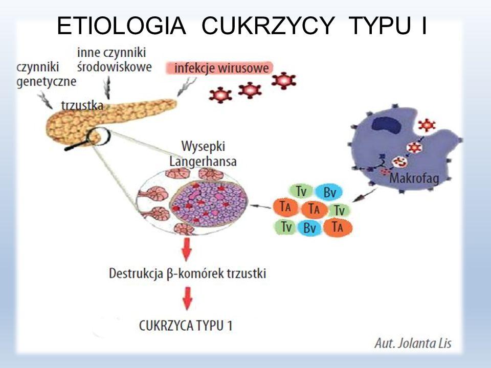 Cukrzyca typu II Kiedy gospodarka insulinowa organizmu jest nie prawidłowa – mówimy o cukrzycy typu II, która jest insulinoniezależną.