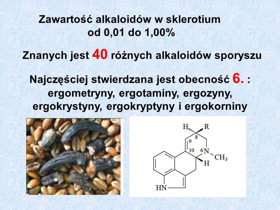 Zawartość alkaloidów w sklerotium od 0,01 do 1,00% Znanych jest 40 różnych alkaloidów sporyszu Najczęściej stwierdzana jest obecność 6.