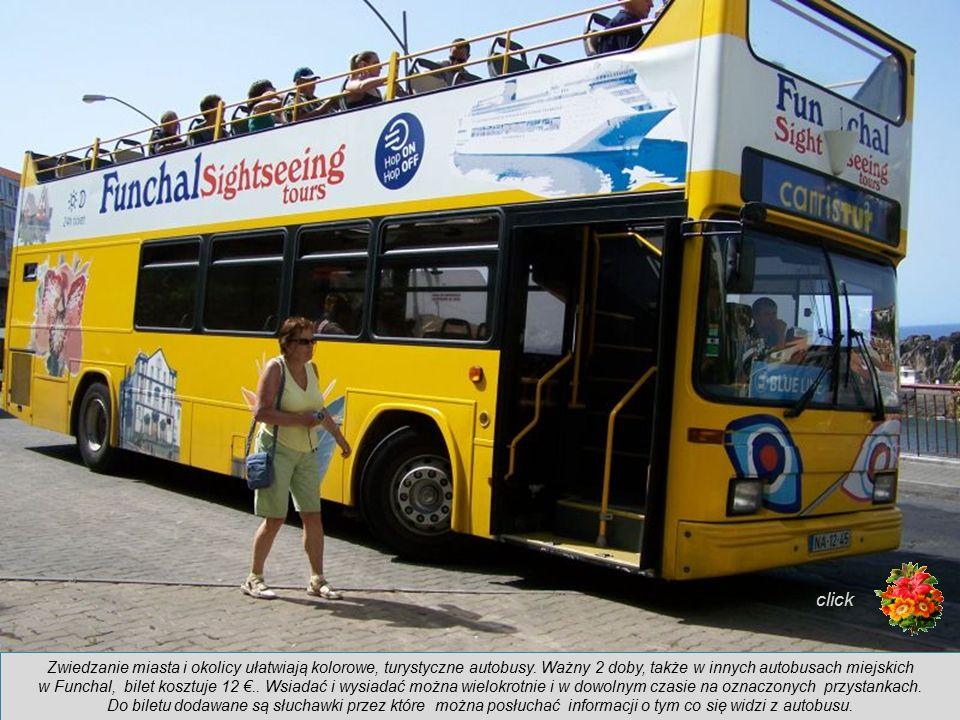 Zwiedzanie miasta i okolicy ułatwiają kolorowe, turystyczne autobusy.