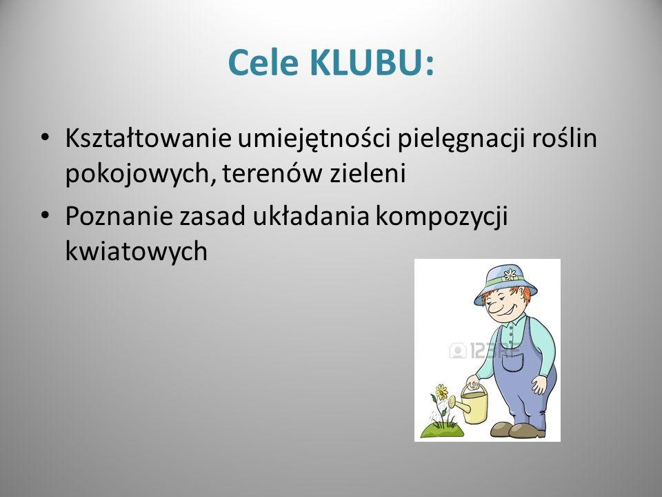 Cele KLUBU: Kształtowanie umiejętności pielęgnacji roślin pokojowych, terenów zieleni Poznanie zasad układania kompozycji kwiatowych