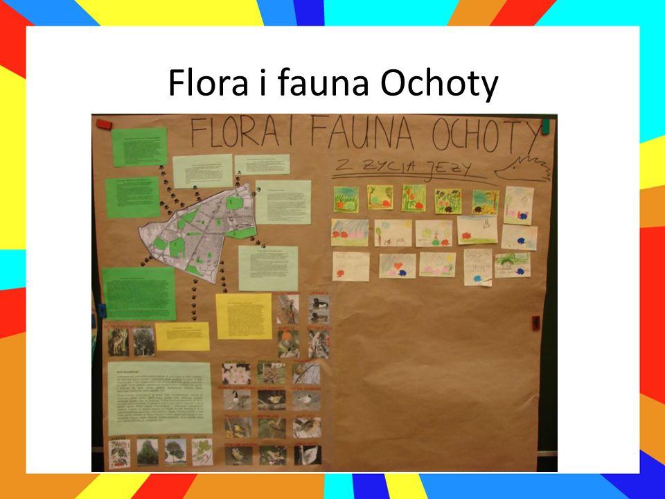 Flora i fauna Ochoty