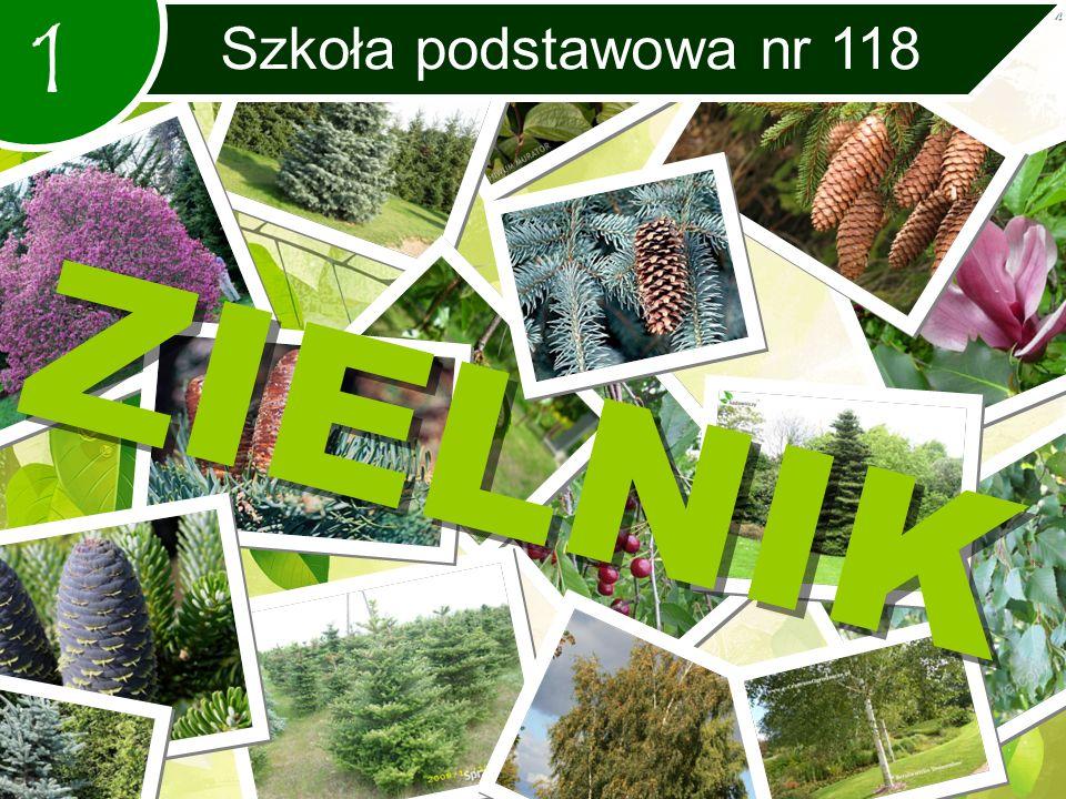1 Szkoła podstawowa nr 118 ZIELNIK
