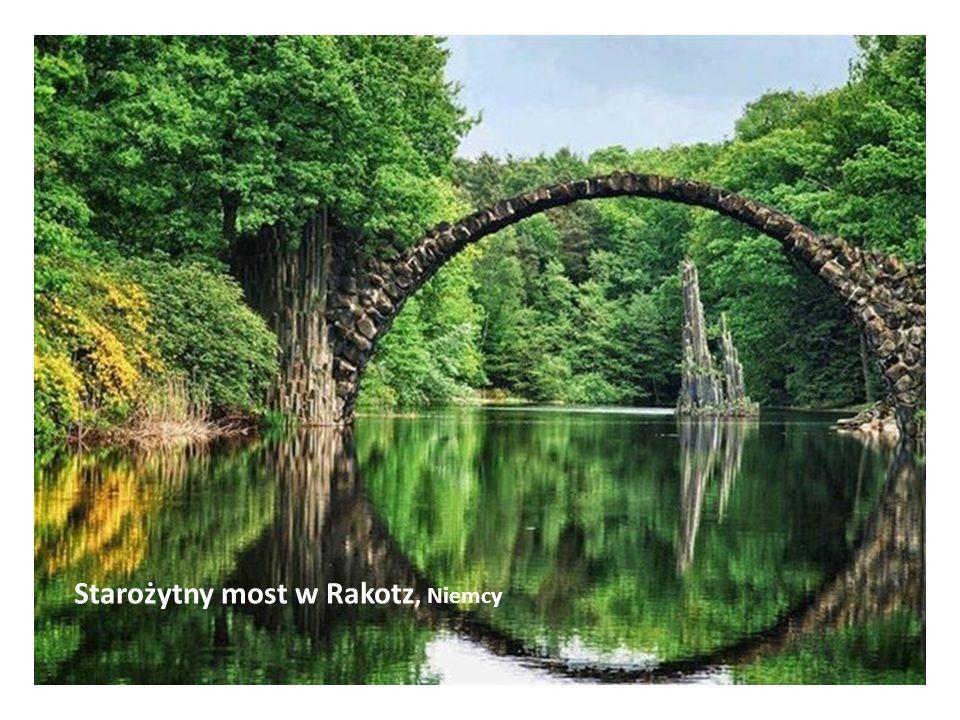 Most z korzeni drzew, Indie