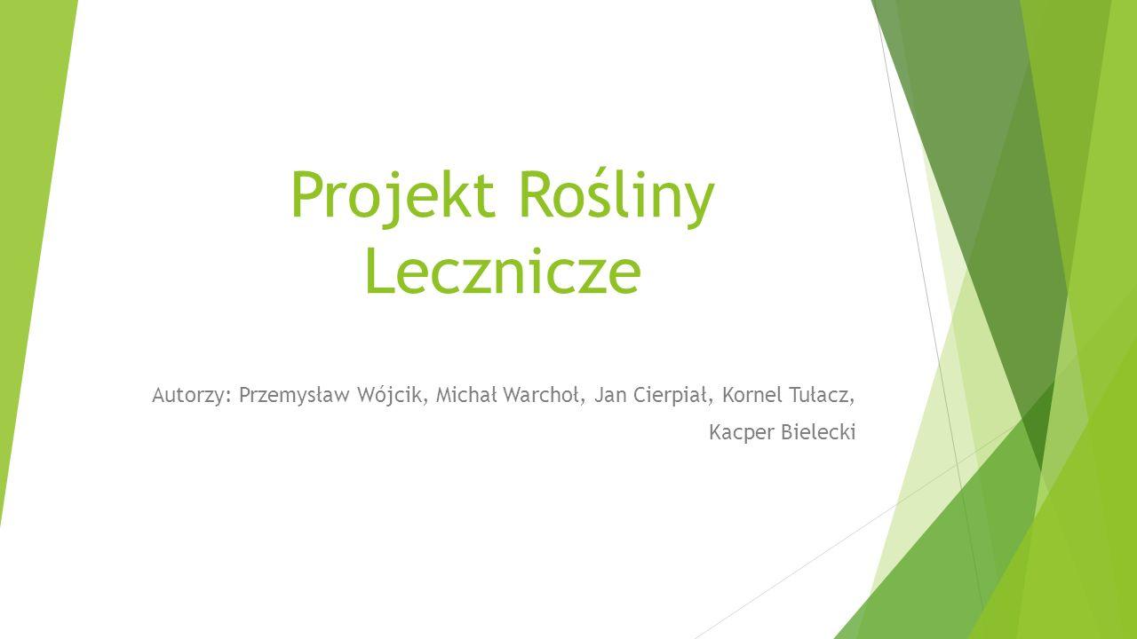 Projekt Rośliny Lecznicze Autorzy: Przemysław Wójcik, Michał Warchoł, Jan Cierpiał, Kornel Tułacz, Kacper Bielecki