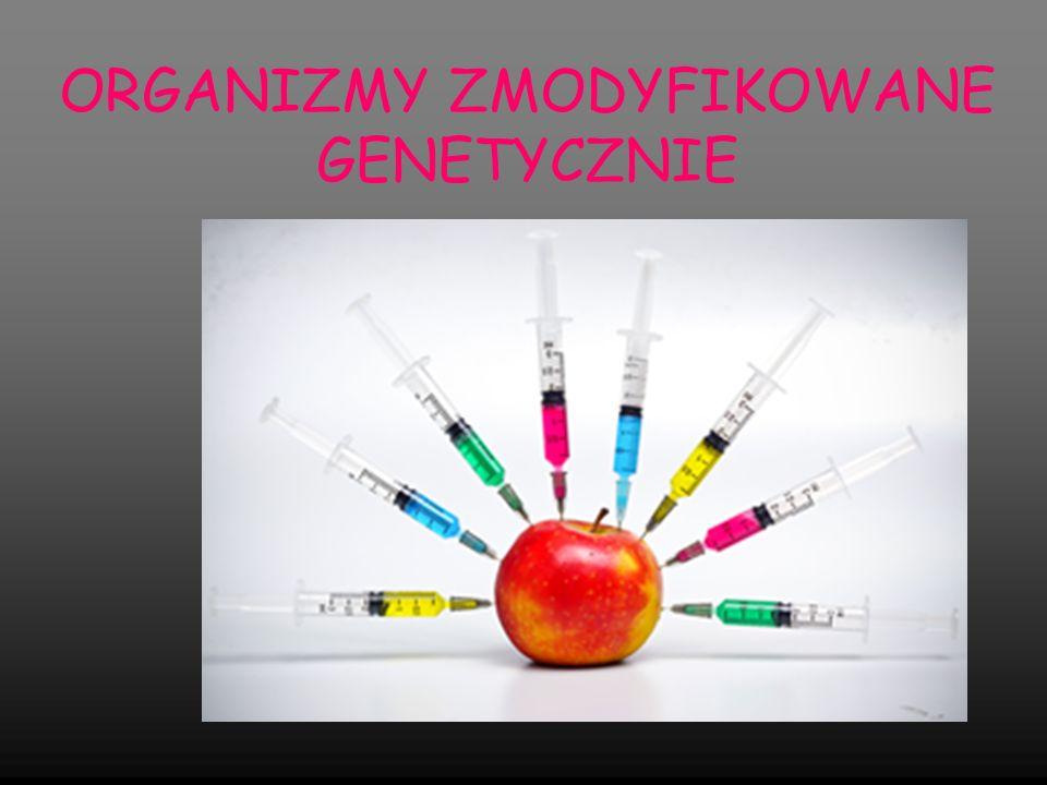Organizmy zmodyfikowane genetycznie w skrócie GMO to organizmy, których geny zostały celowo zmienione przez człowieka Organizm Transgeniczny – zawierający przenoszony gen – wtedy tzw.