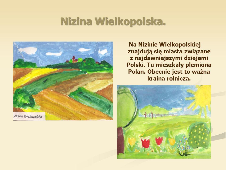 Nizina Wielkopolska. Na Nizinie Wielkopolskiej znajdują się miasta związane z najdawniejszymi dziejami Polski. Tu mieszkały plemiona Polan. Obecnie je
