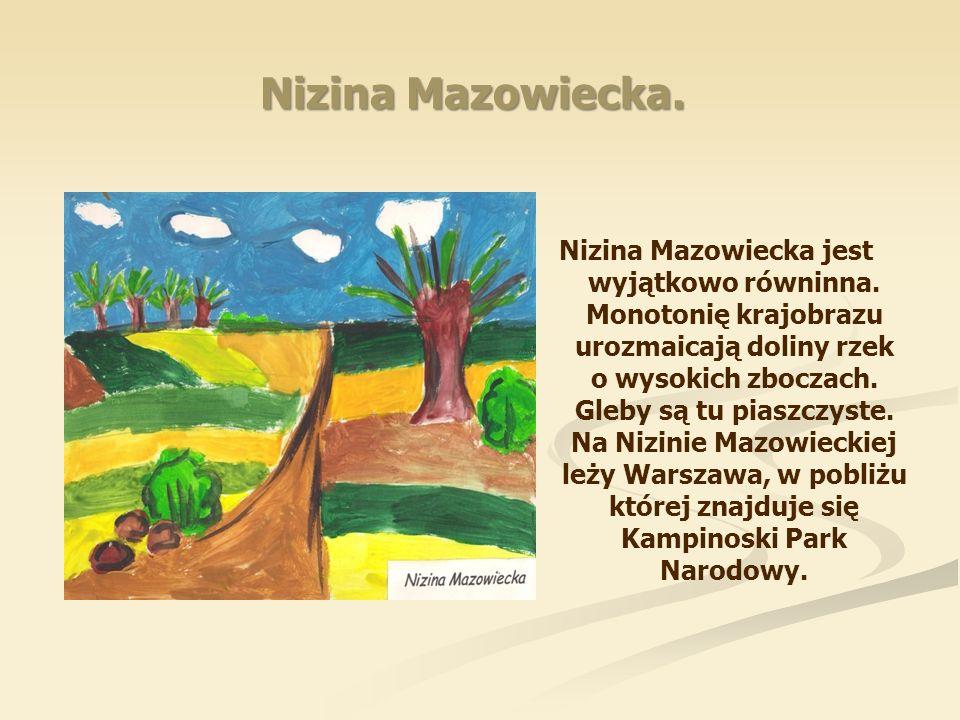 Nizina Mazowiecka. Nizina Mazowiecka jest wyjątkowo równinna. Monotonię krajobrazu urozmaicają doliny rzek o wysokich zboczach. Gleby są tu piaszczyst