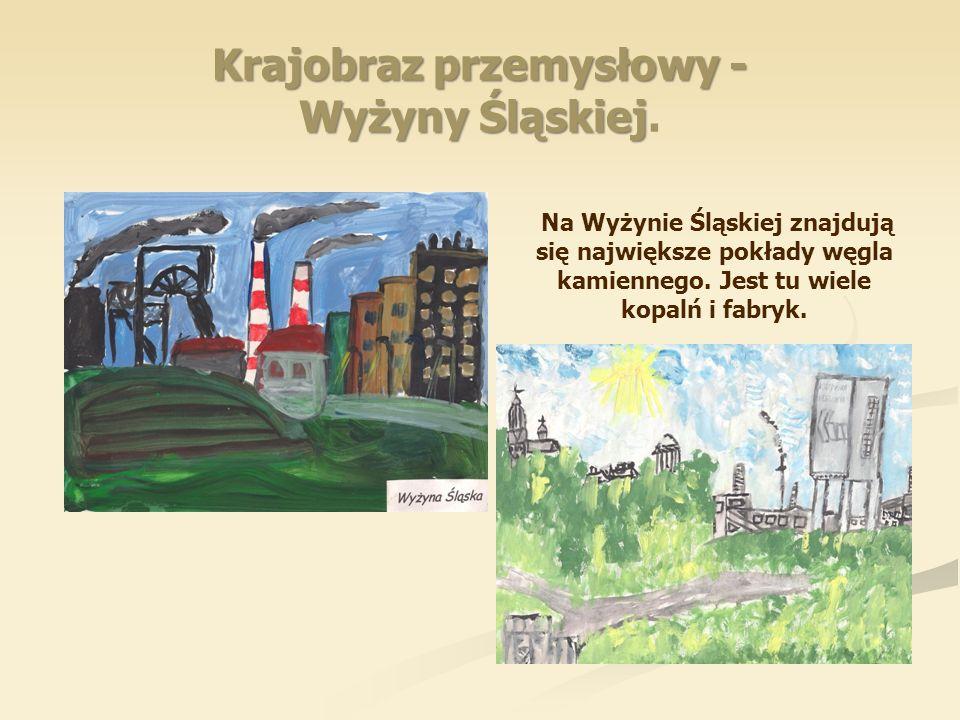 Krajobraz przemysłowy - Wyżyny Śląskiej Krajobraz przemysłowy - Wyżyny Śląskiej. Na Wyżynie Śląskiej znajdują się największe pokłady węgla kamiennego.