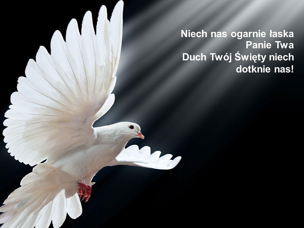 Niech nas ogarnie łaska Panie Twa Duch Twój Święty niech dotknie nas!