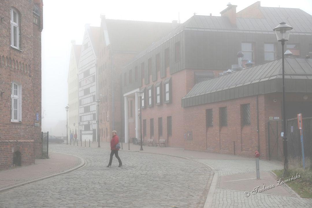 Port Północny w Gdańsku