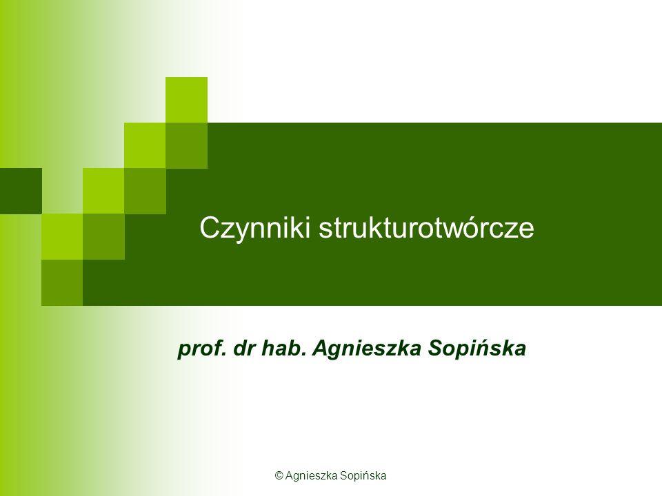 Czynniki strukturotwórcze prof. dr hab. Agnieszka Sopińska © Agnieszka Sopińska