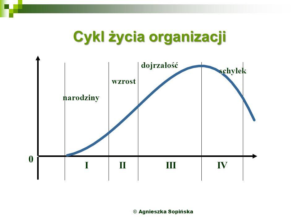 Cykl życia organizacji 0 IIIIIIIV narodziny wzrost dojrzałość schyłek © Agnieszka Sopińska