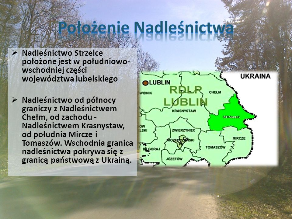 Nadleśnictwo Strzelce położone jest w południowo- wschodniej części województwa lubelskiego  Nadleśnictwo od północy graniczy z Nadleśnictwem Chełm