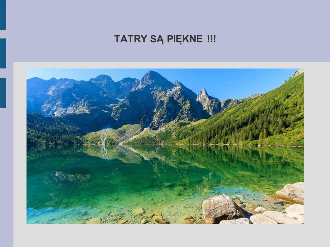 Dziewięćsił bezłodygowy Choć występuję nie tylko w Tatrach, związany jest bardzo z folklorem Zakopanego