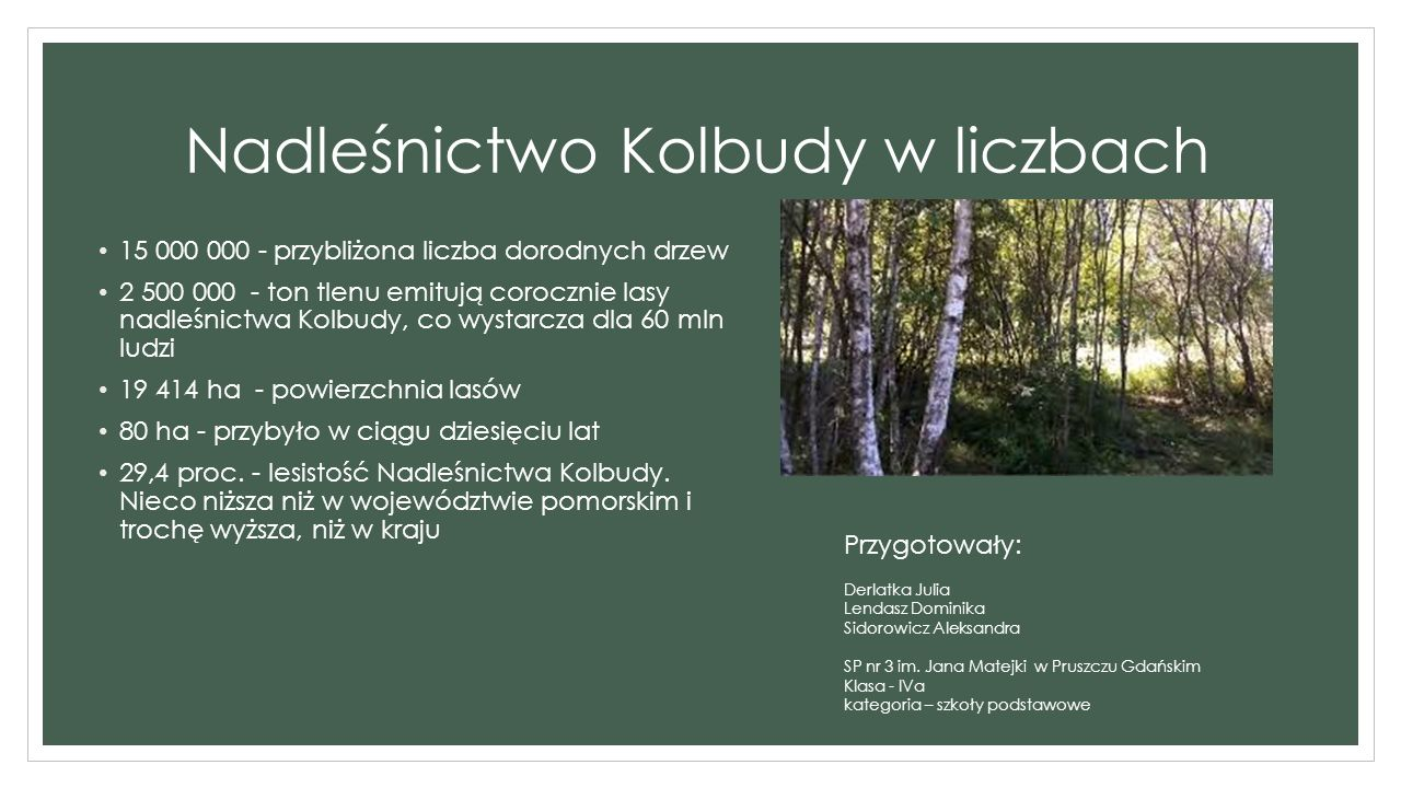 Nadleśnictwo Kolbudy posadzi milion nowych drzew.