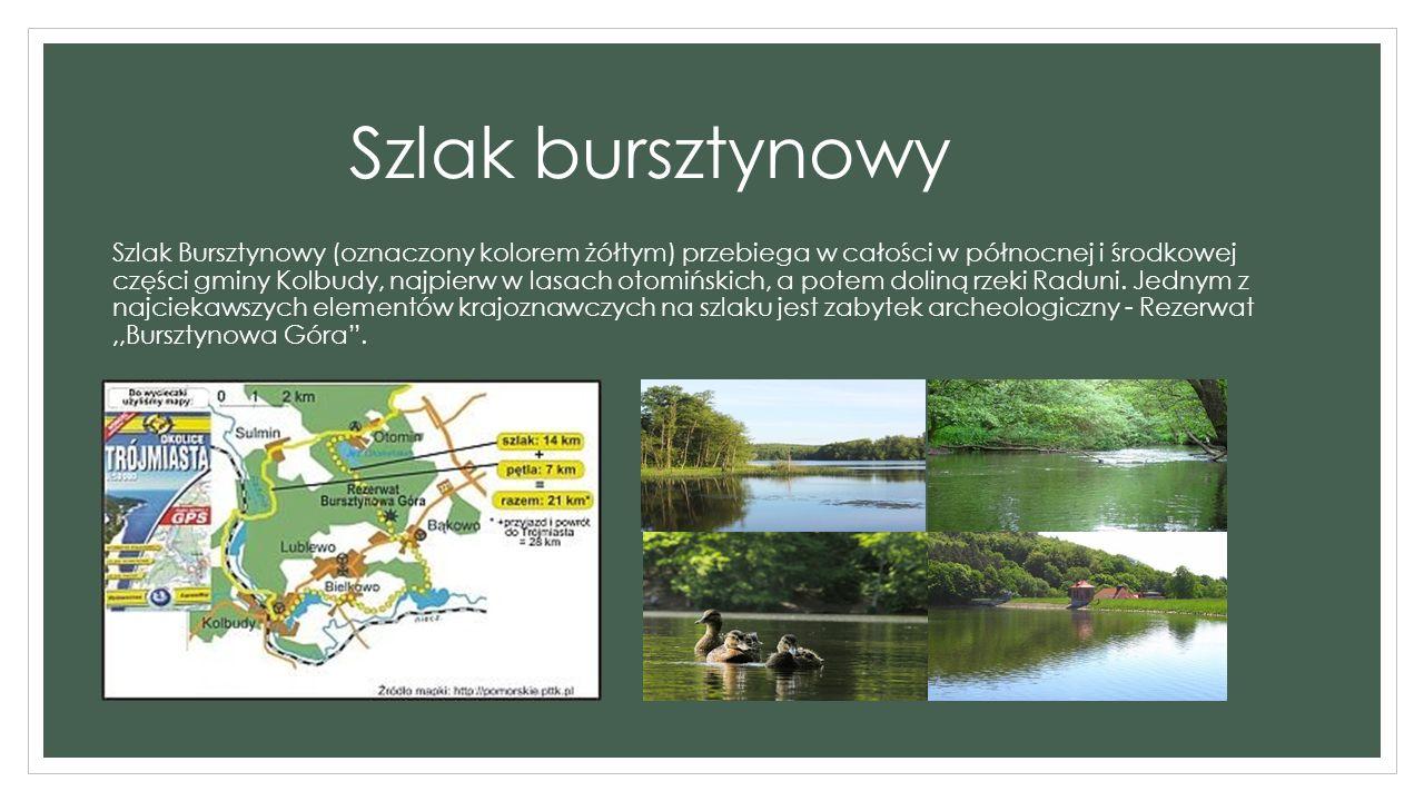 Szlak bursztynowy Szlak Bursztynowy (oznaczony kolorem żółtym) przebiega w całości w północnej i środkowej części gminy Kolbudy, najpierw w lasach otomińskich, a potem doliną rzeki Raduni.