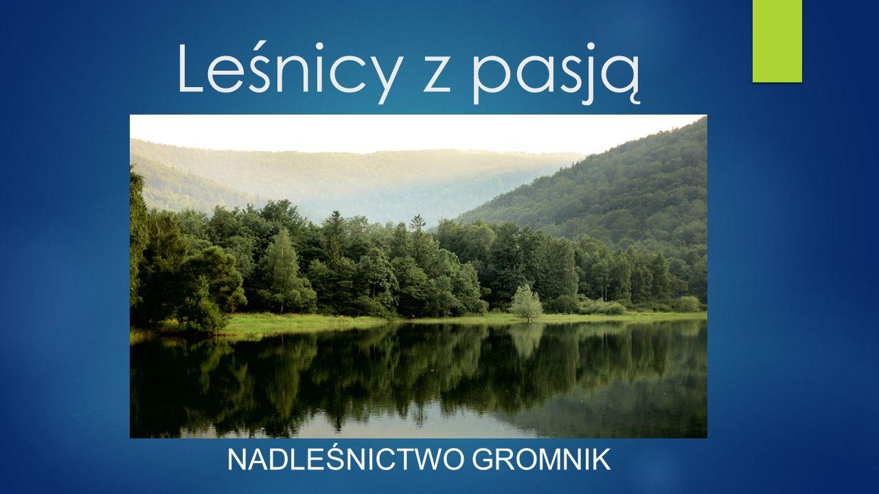Leśnicy z pasją NADLEŚNICTWO GROMNIK