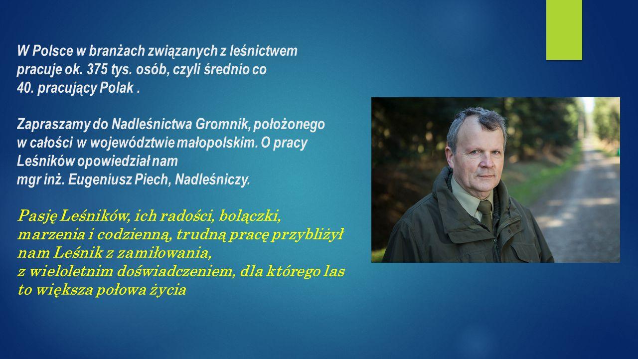 W Polsce w branżach związanych z leśnictwem pracuje ok.