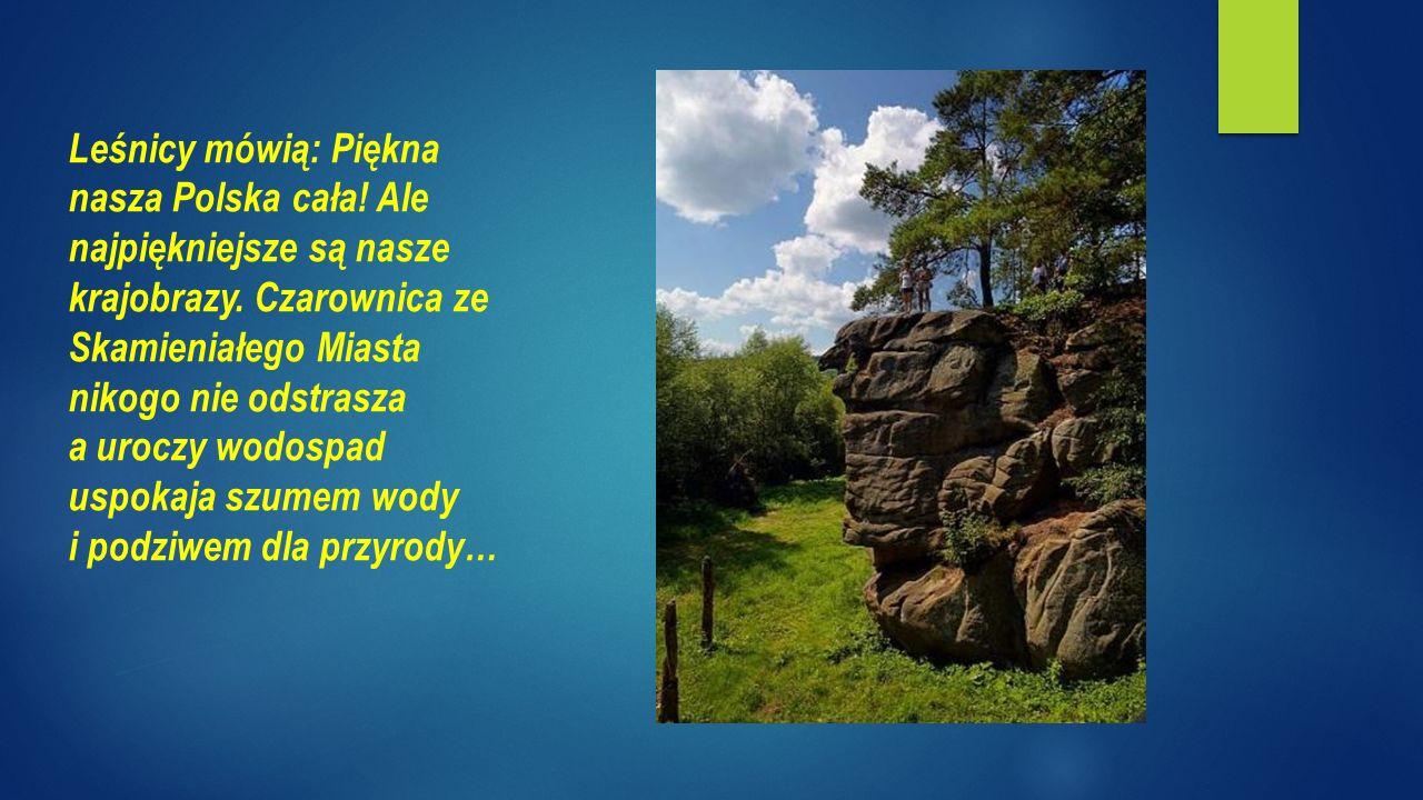 Leśnicy mówią: Piękna nasza Polska cała. Ale najpiękniejsze są nasze krajobrazy.