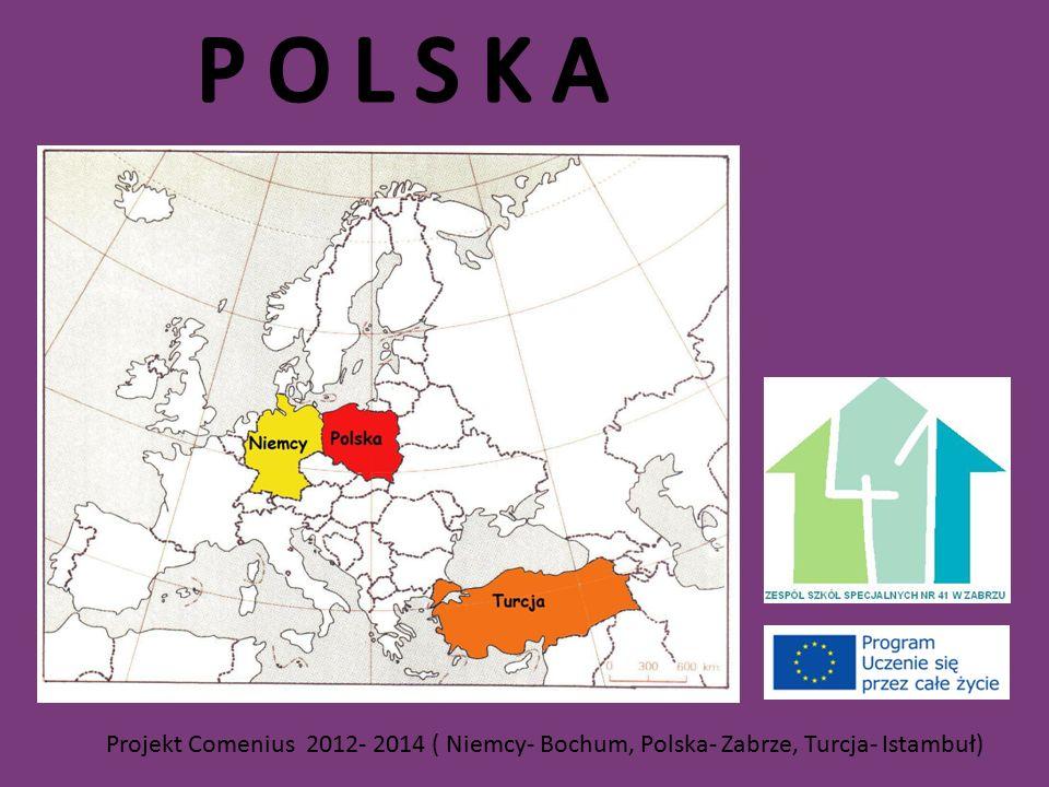Projekt Comenius 2012- 2014 ( Niemcy- Bochum, Polska- Zabrze, Turcja- Istambuł)