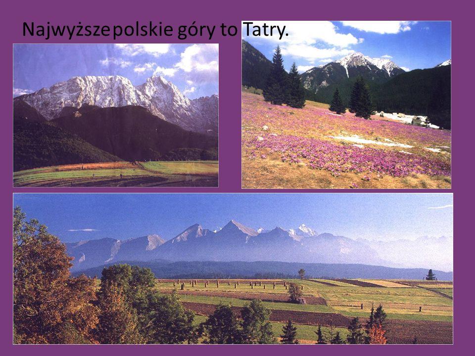Najwyższe polskie góry to Tatry.