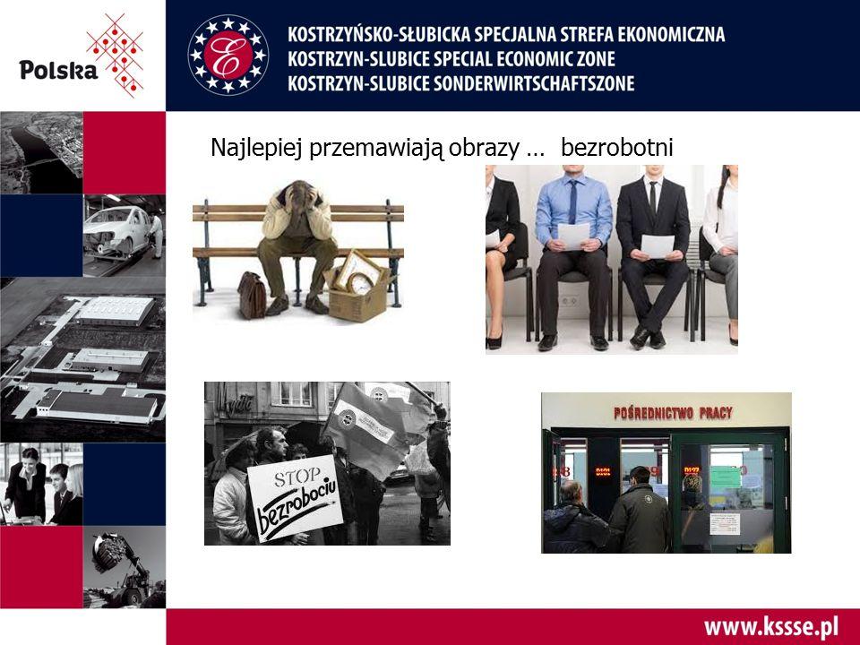 Wpływ Kostrzyńsko-Słubickiej Specjalnej Strefy Ekonomicznej na gospodarczy obraz regionu…