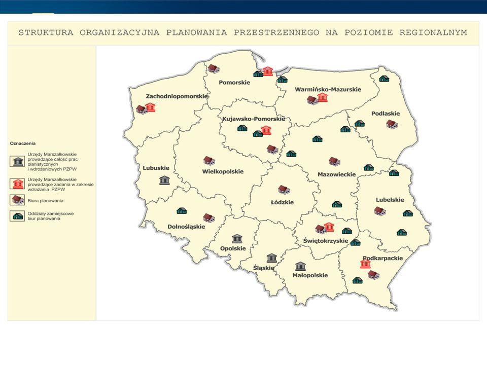 Do najczęstszych należą: opracowywanie projektu planu zagospodarowania przestrzennego województwa, jego okresowej oceny, przeglądu zmian w zagospodarowaniu przestrzennym i opracowanie raportu o stanie zagospodarowania przestrzennego województwa wraz z oceną realizacji inwestycji celu publicznego o znaczeniu ponadlokalnym; prowadzenie analiz i studiów oraz sporządzanie koncepcji służących określeniu uwarunkowań i kierunków polityki przestrzennej samorządu województwa; współdziałanie z gminami przy sporządzaniu aktów planowania miejscowego oraz w sprawach lokalizacji inwestycji określonych w przepisach; budowa banku danych o przestrzeni województwa, monitorowanie zmian w zagospodarowaniu przestrzennym województwa; sporządzenie lub współudział w sporządzaniu strategii rozwoju województwa, regionalnego programu operacyjnego i programów rozwoju województw; współudział w opracowywaniu planów ochrony parków krajobrazowych; sporządzanie strategicznych ocen oddziaływania na środowisko do strategicznych i programowych sporządzanych przez organy województwa; udział w projektach współpracy międzynarodowej i międzyregionalnej w sprawach zagospodarowania przestrzennego i rozwoju regionalnego; obsługa prac Wojewódzkiej Komisji Urbanistyczno-Architektonicznej i prace na rzecz Regionalnego Forum Terytorialnego.