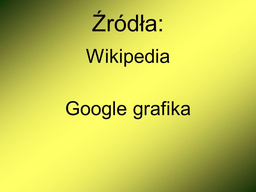 Źródła: Wikipedia Google grafika